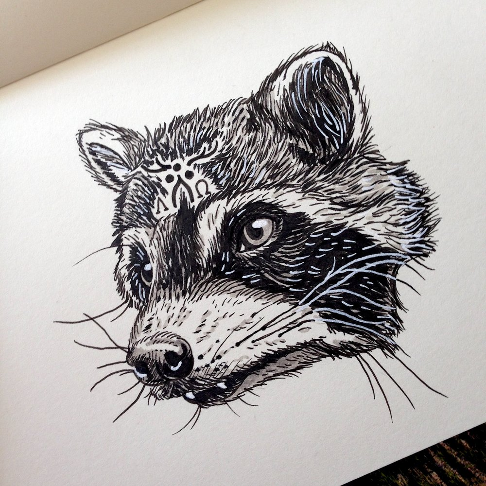 NOT FOR SALE - Day Twenty-Eight - Raccoon