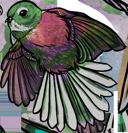 bird-fantail.png