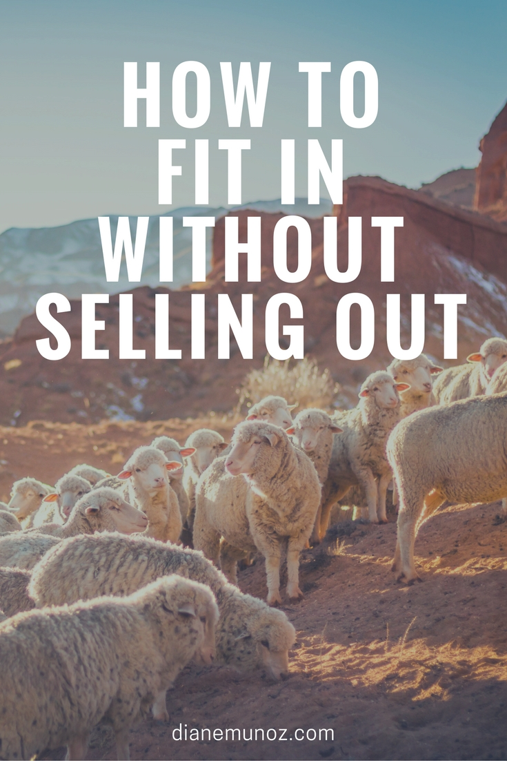 How to Fit In Without Selling Out | dianemunoz.com