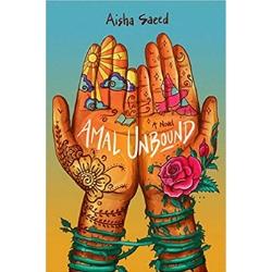 Novels for Tweens Amal Unbound