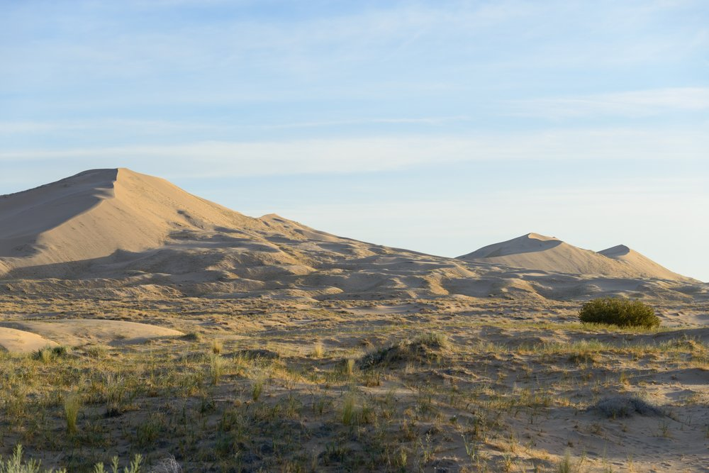 Kelso Dunes at sunrise.