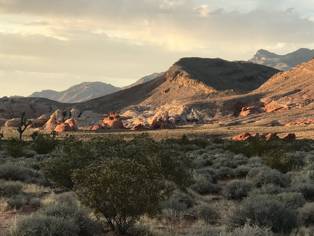 According to a leaked memo, Secretary of Interior Ryan Zinke recommended shrinking Gold Butte National Monument in southern Nevada, among an array of changes proposed for several monuments.