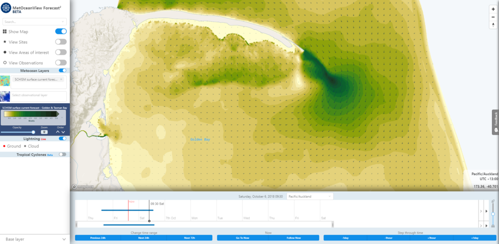 Map layer of SCHISM surface current forecast. Image from MetOceanView.