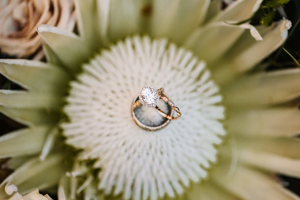 Lichterman Nature Center Wedding_La Croix Wedding_Ashley Benham Photography-41.jpg