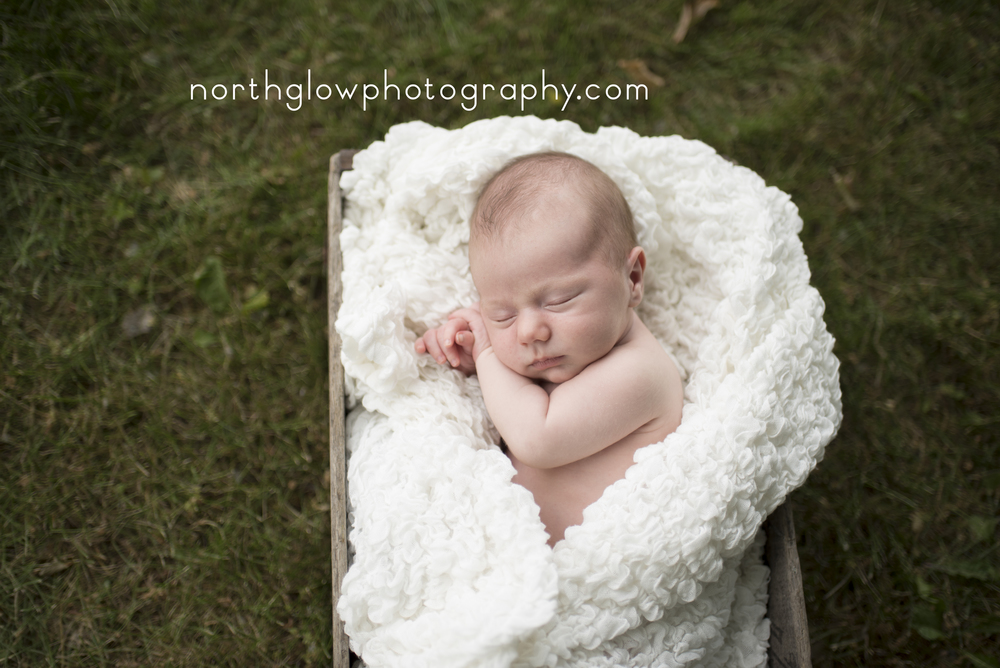 Julian Newborn | NorthGlow Photography