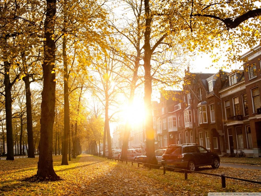sunny_autumn_afternoon_in_utrecht-wallpaper-1600x1200.jpg
