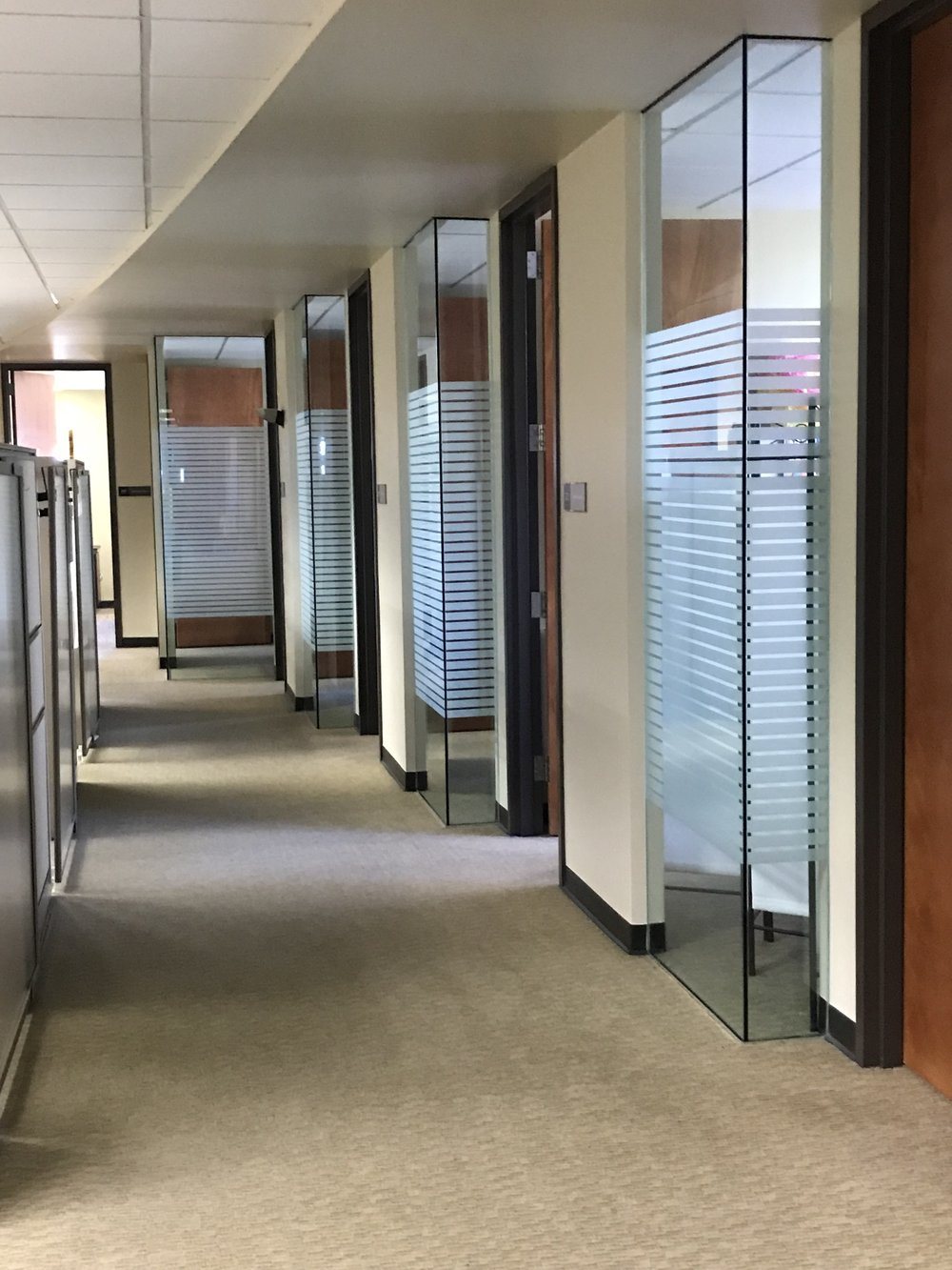 Decorative Privacy Film for Office