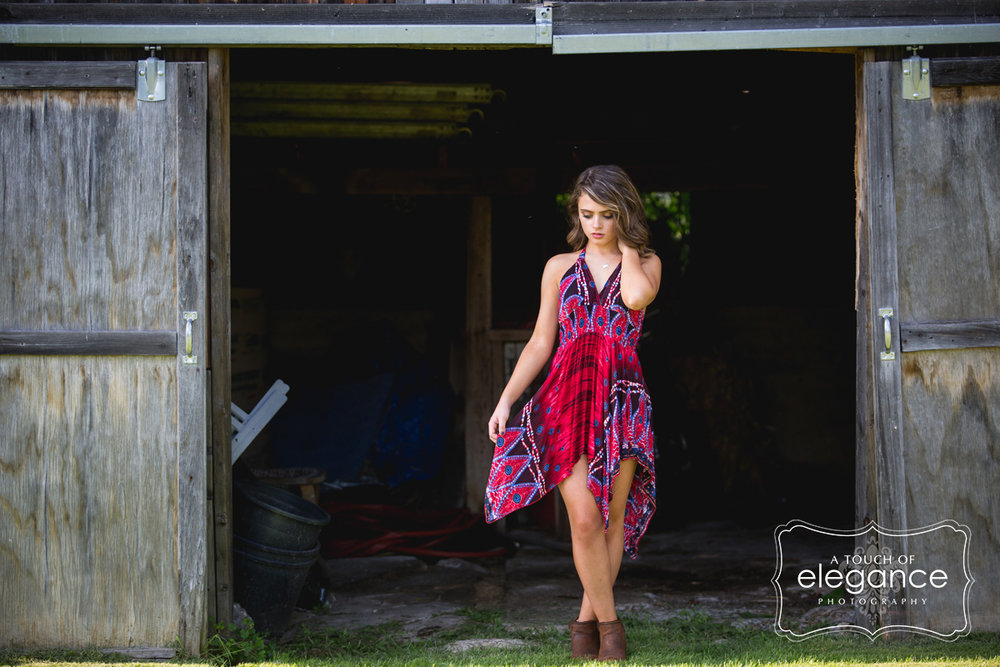 a-touch-of-elegance-photograpy-rochester-senior-session-014.jpg