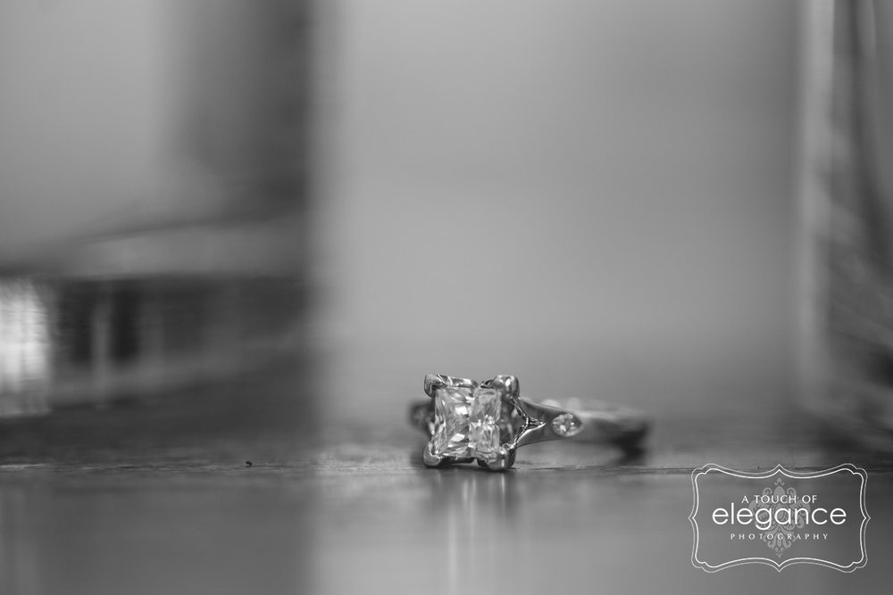 engagement-proposal-session-wedding-a-touch-of-elegance-photography-027.jpg