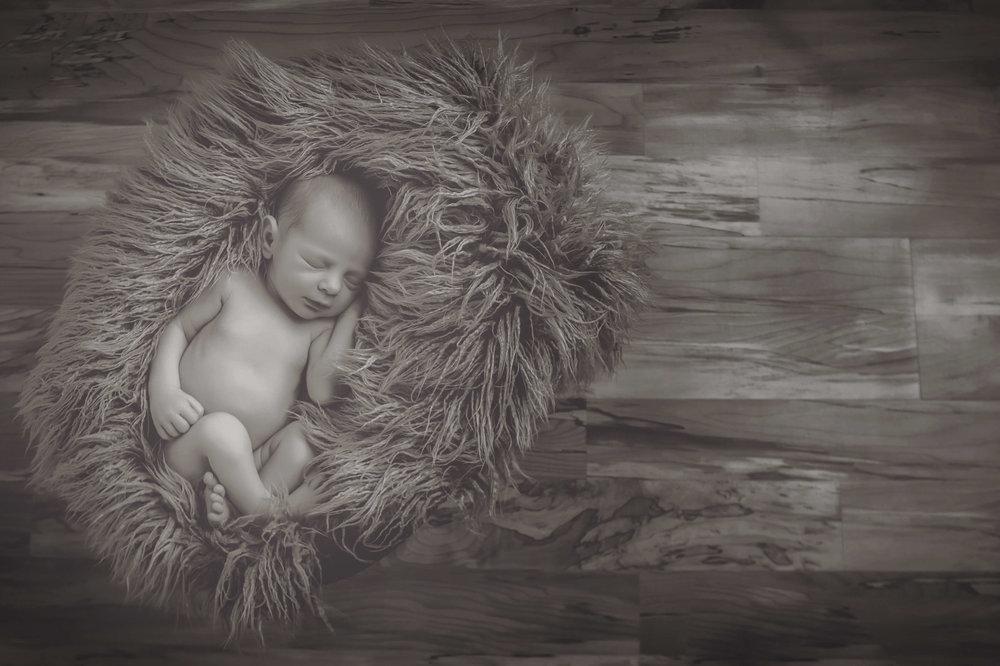 family-baby-newborn-childrens-photography-fairport-ny-70.jpg