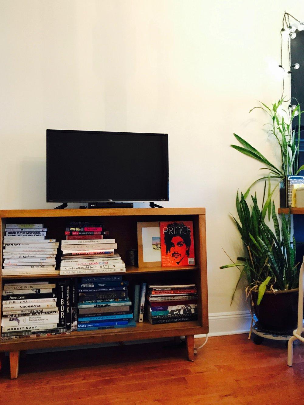 Living Space 1.jpg