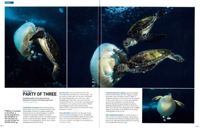 SCUBA Diver Australasia, issue 3/2016.  I wrote about a lucky encounter with some feasting turtles at Julian Rocks, Cape Byron Marine Park, NSW.