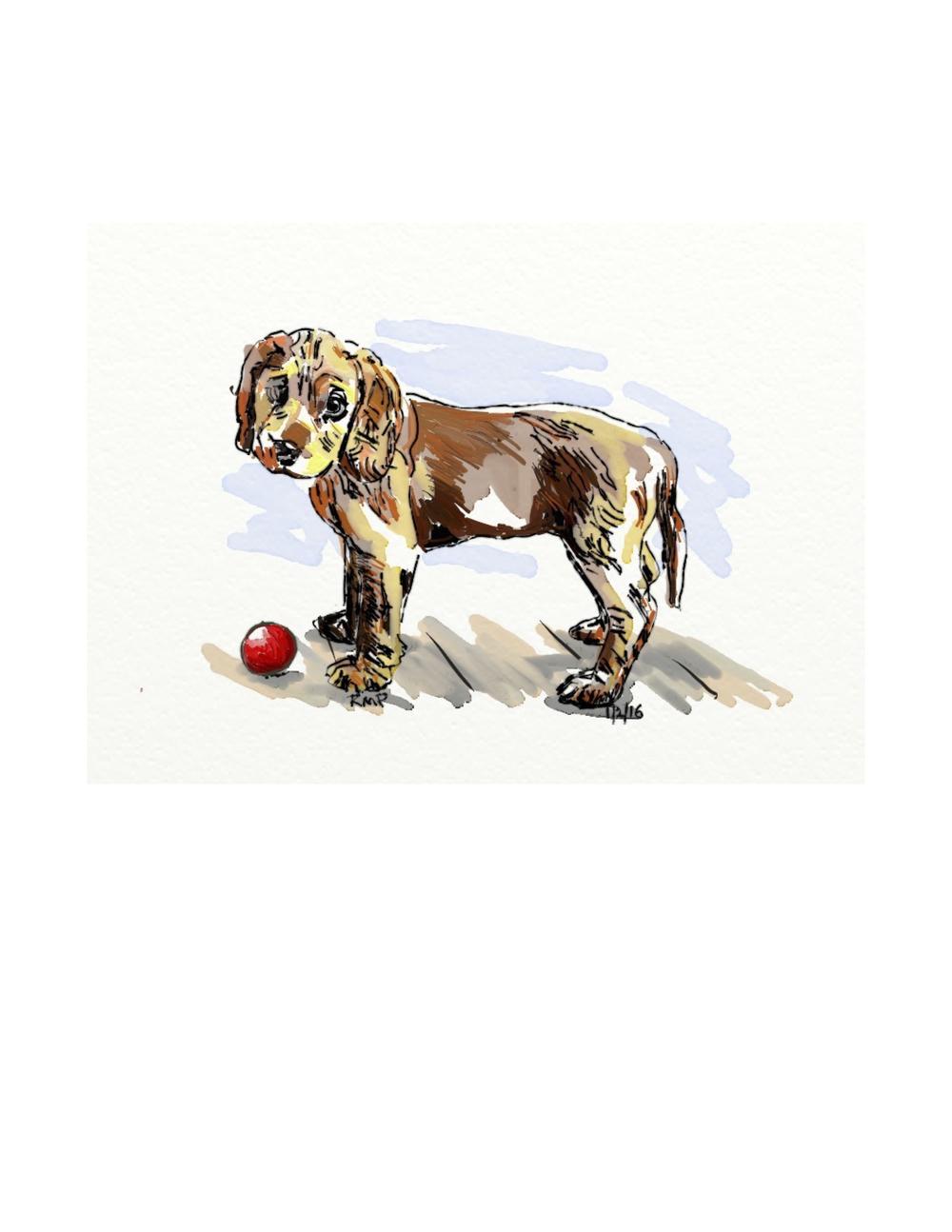 Doggy-Style.jpg