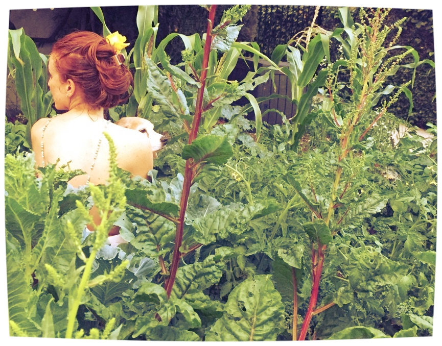 International Naked Gardening Day is Jill's favorite holiday