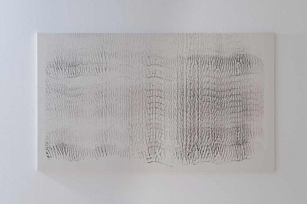 Roca 2012 Monotypes.Acrylic on canvas. 282cm x 165cm. (9´x5´).