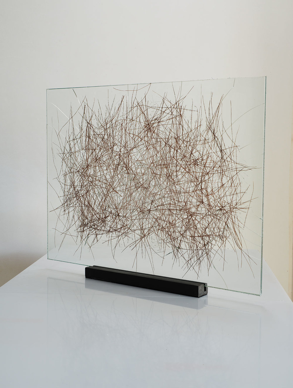 "Pine needles inserted in glass, 2015. 50cm x 70cm. (19""x 28""). (16""x16"")"