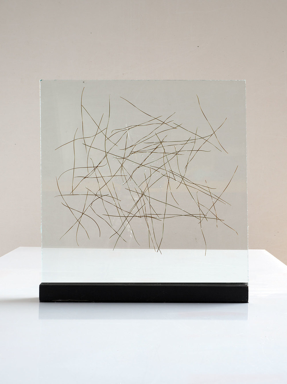 "Pine needles inserted in glass 2015. 40cm x 40cm. (16""x16"")"