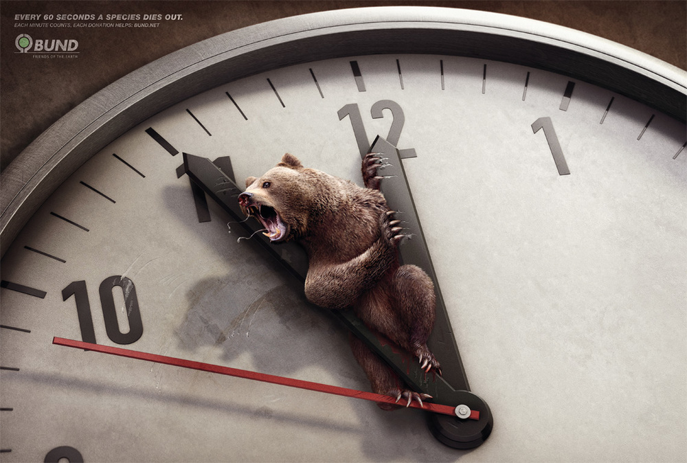 BUND_Bear_engl_768.jpg