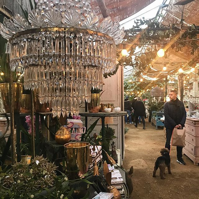 Feeling the Christmas vibes @petershamnurseries favourite place ✨✨✨