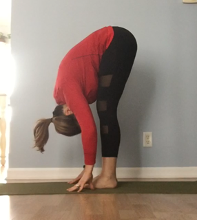 Forward Fold (Modification:  Knees bent with hands on shins)