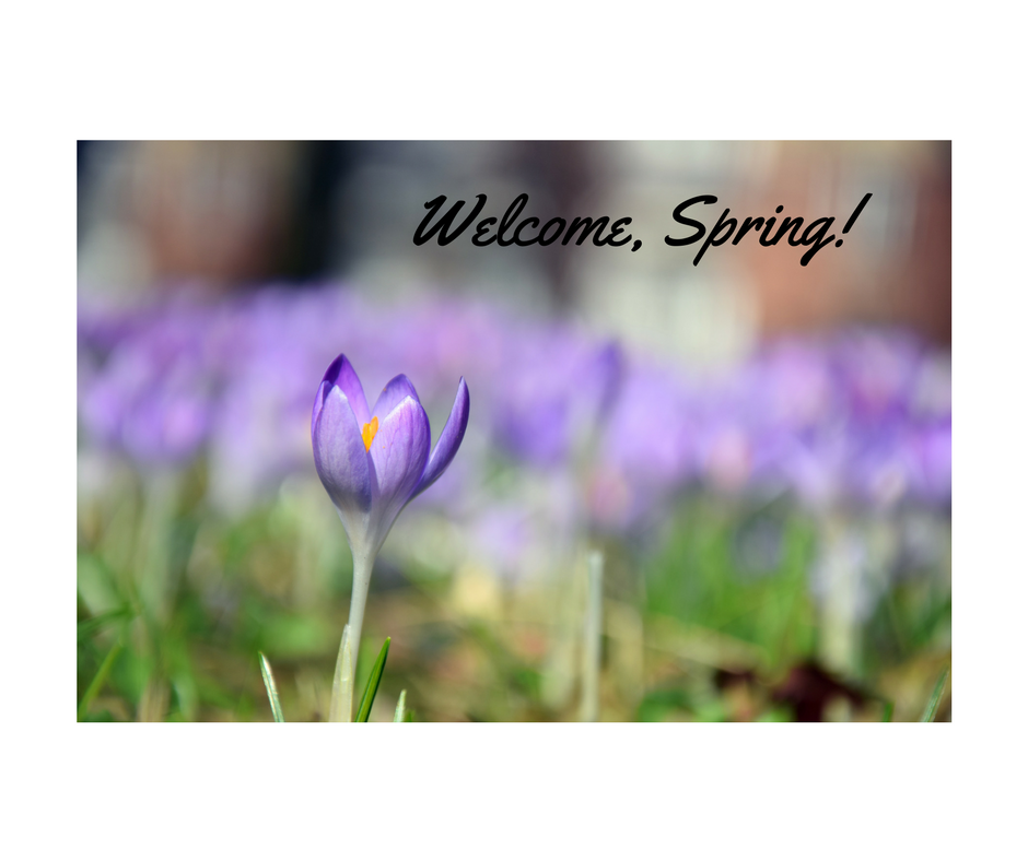 Happy Vernal Equinox.Hello Spring......png