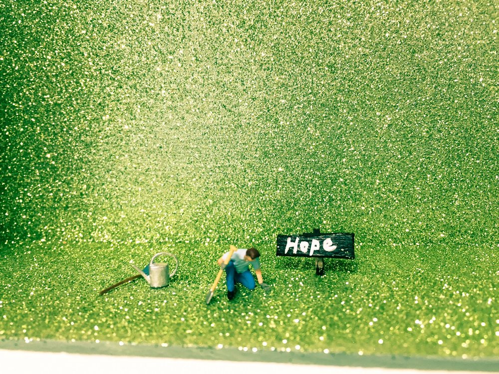 Hope C-U.JPG