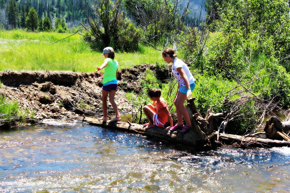 playing-creek-rocky-mountains