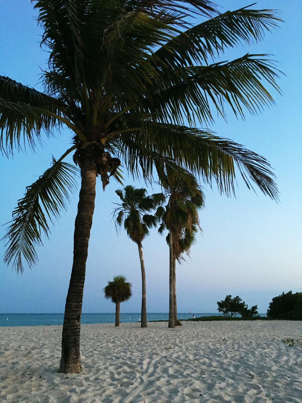 sombrero-beach-marathon-florida