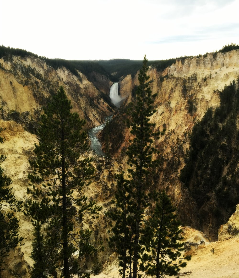 From Old Faithful to Hayden Valley and all of the wildlife, geysers, hot springs, falls, mud pots, hiking trails and swimming holes in between, Yellowstone makes for one rad family vacation.