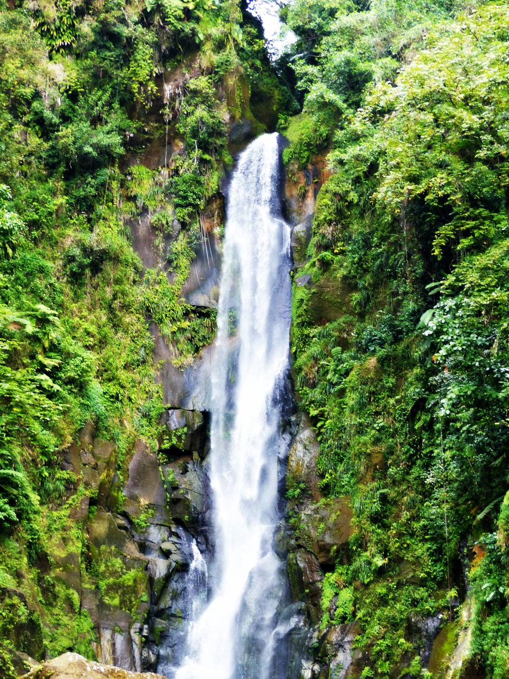 dominica-trafalgar-falls