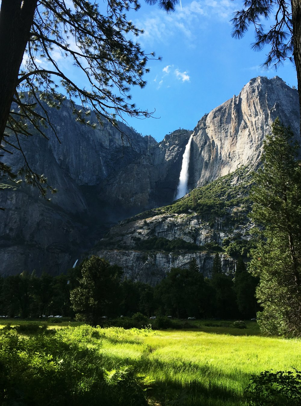 Yosemite view of Upper and Lower falls from meadow