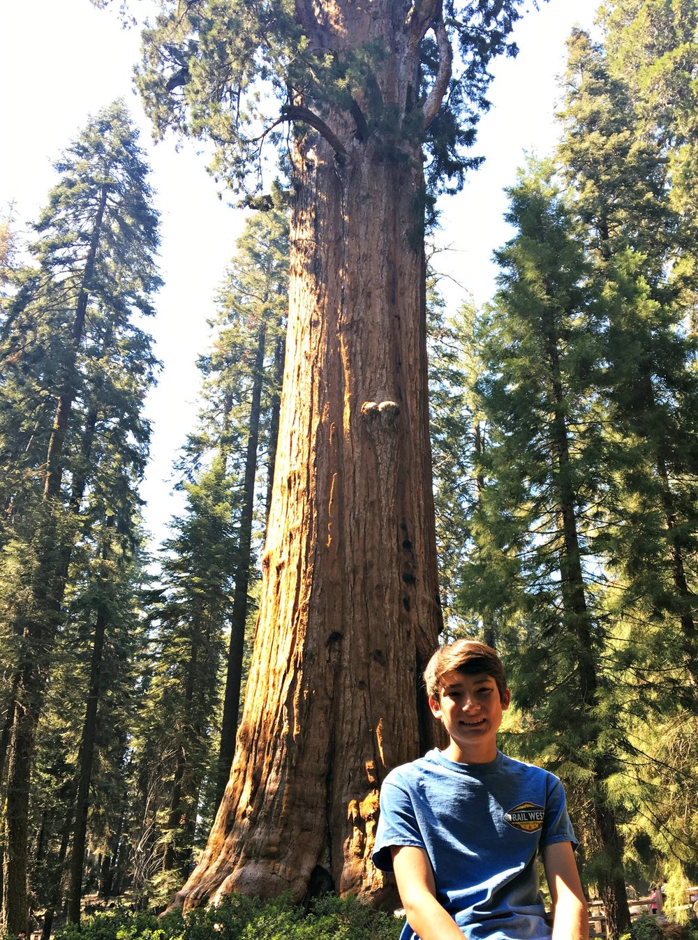 Meeting General Sherman and hiking the easy Congress Trail in Sequoia National Park was a great way to take in wonderful, giant, old Sequoia Redwoods in an up-close personal way. We fell in love with these tall, old, hearty trees as their clusters gladly welcomed us in.
