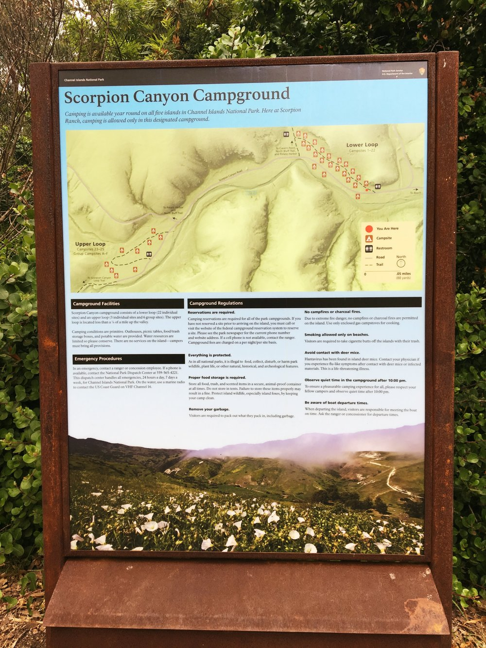 Channel Islands scorpion canyon campground sign.jpg