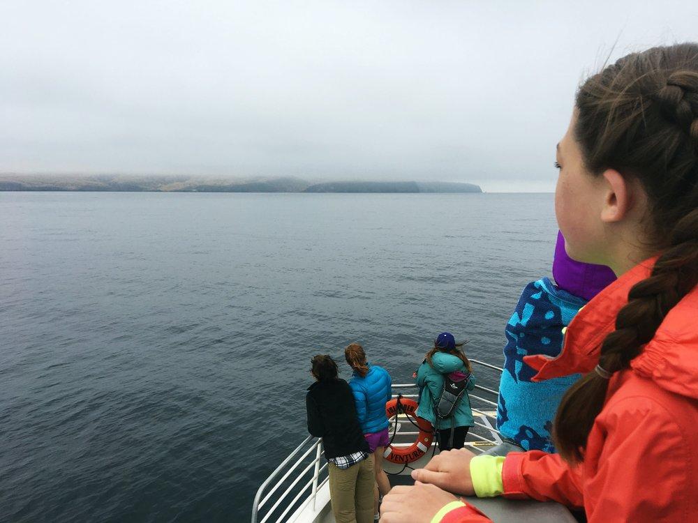 island-packers-ferry-ventura-california