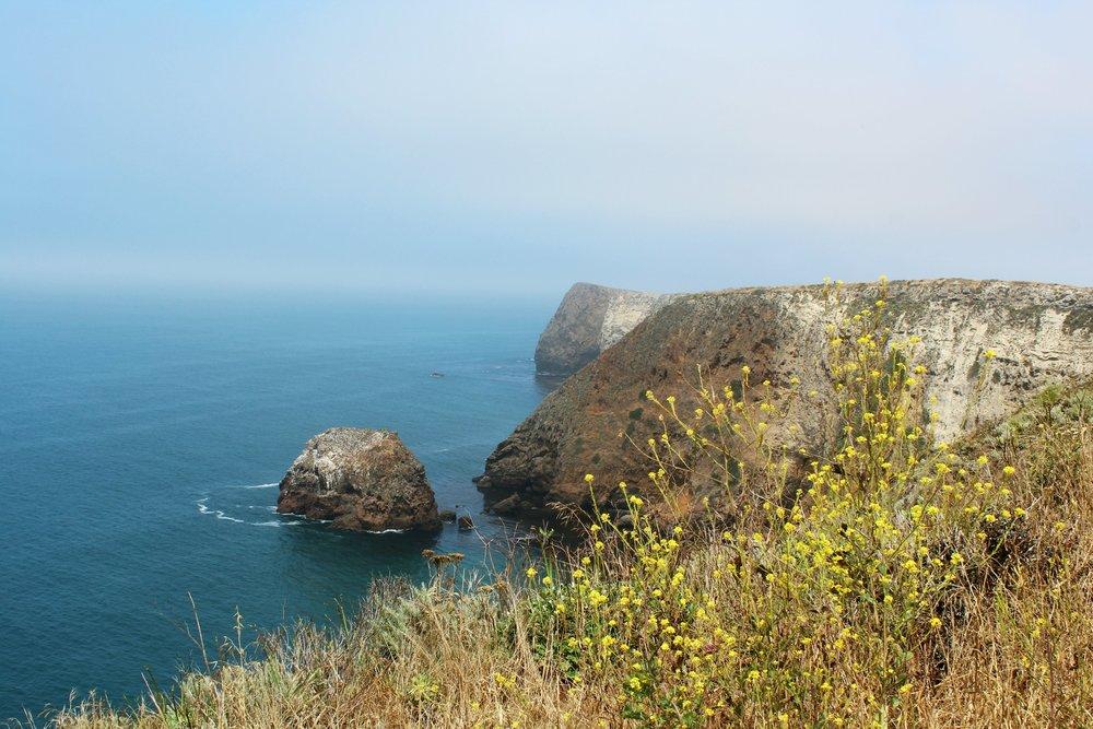 santa-cruz-channel-islands-coast