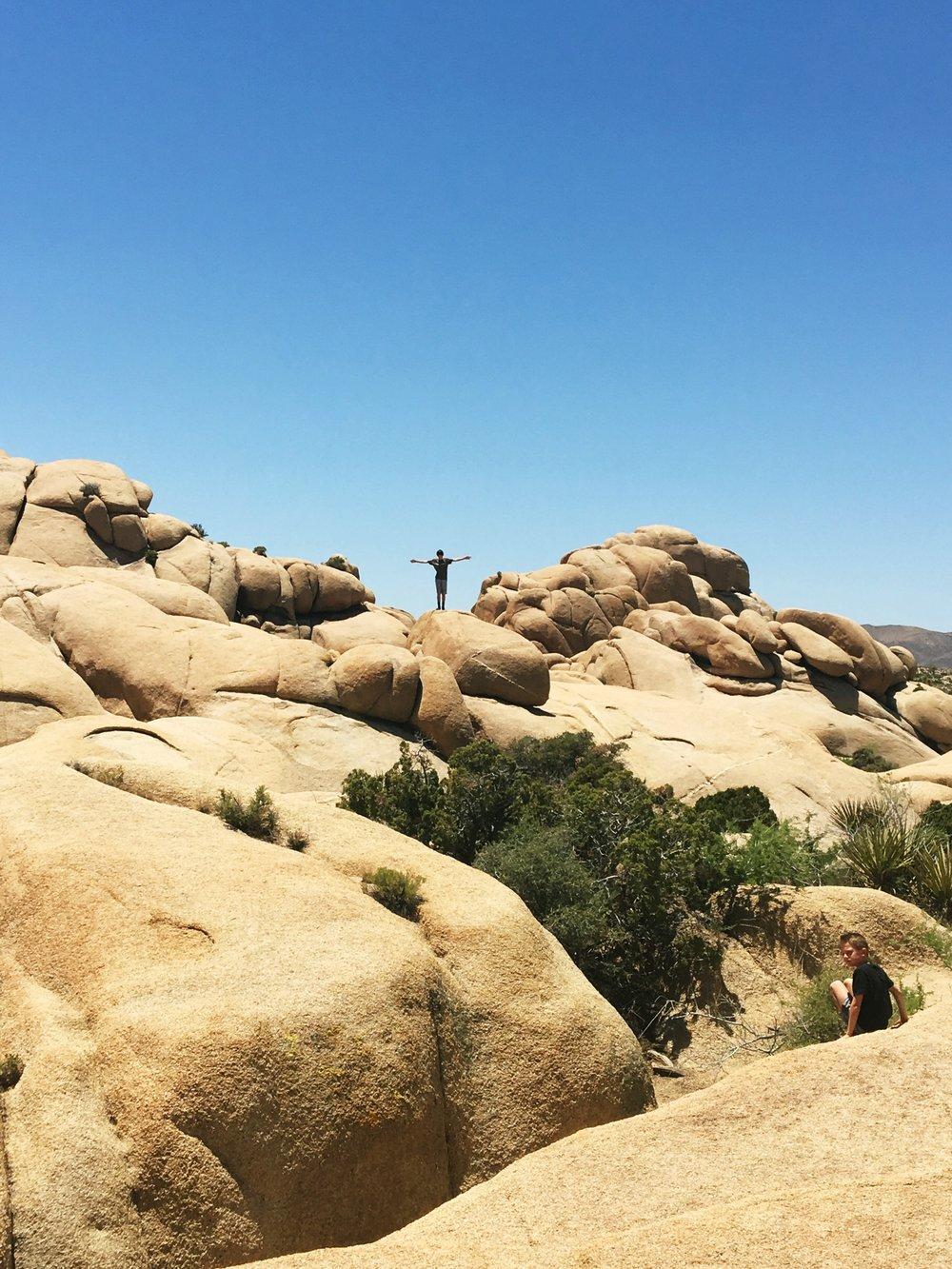 joshua-tree-jumbo-rock-climbing
