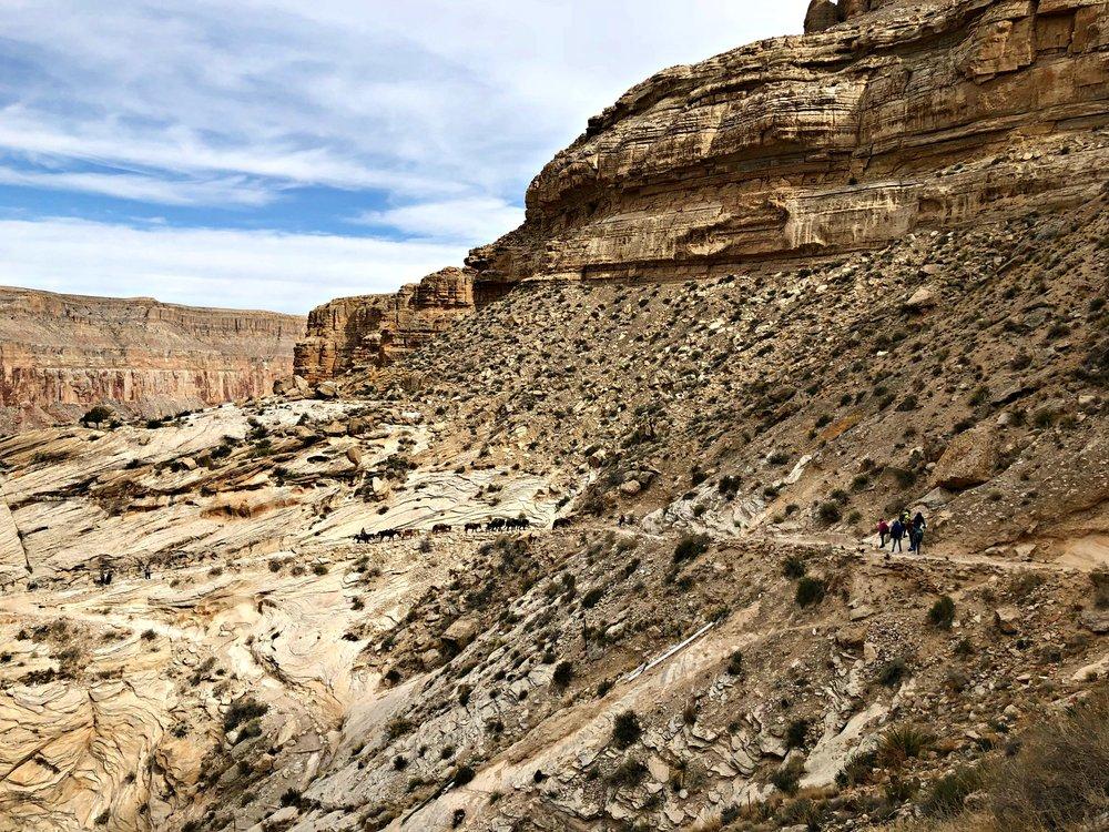 canyon-along-Havasupai-trail