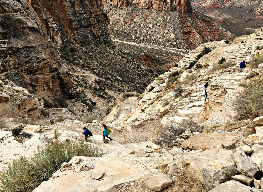hiking-down-grand-canyon