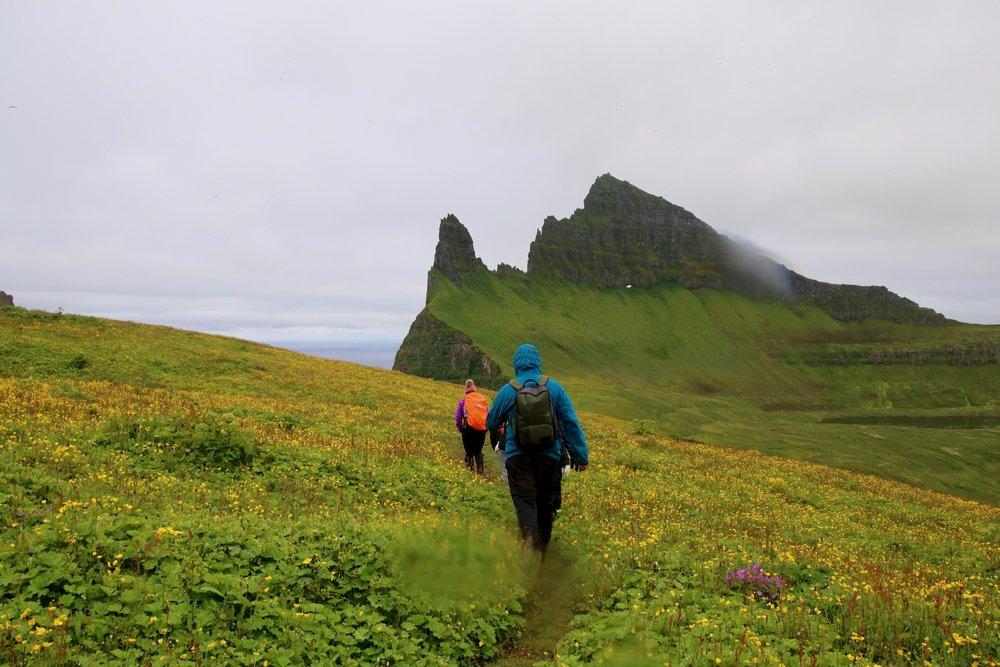 Hornbjarg Cliffs