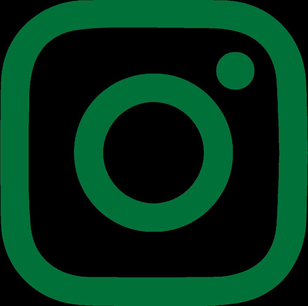 instagram logo groen voor signature-22.png