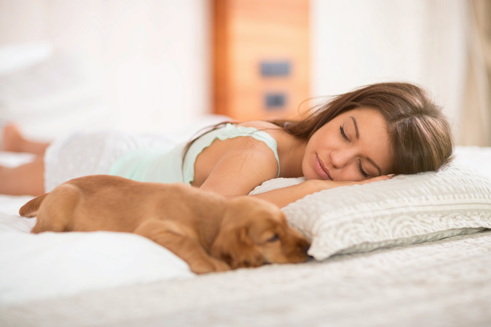 Get More  Sleep -