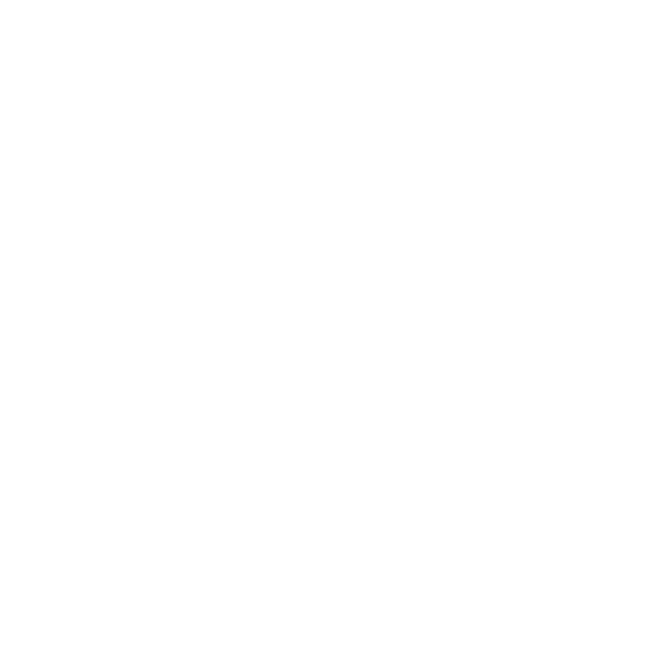 High Five RVA