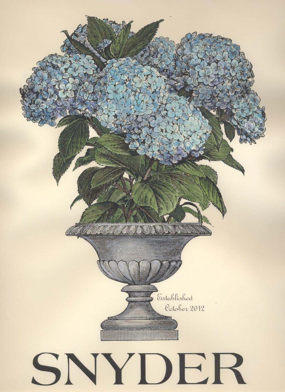 Hydrangea.Blue.Snyder.jpg