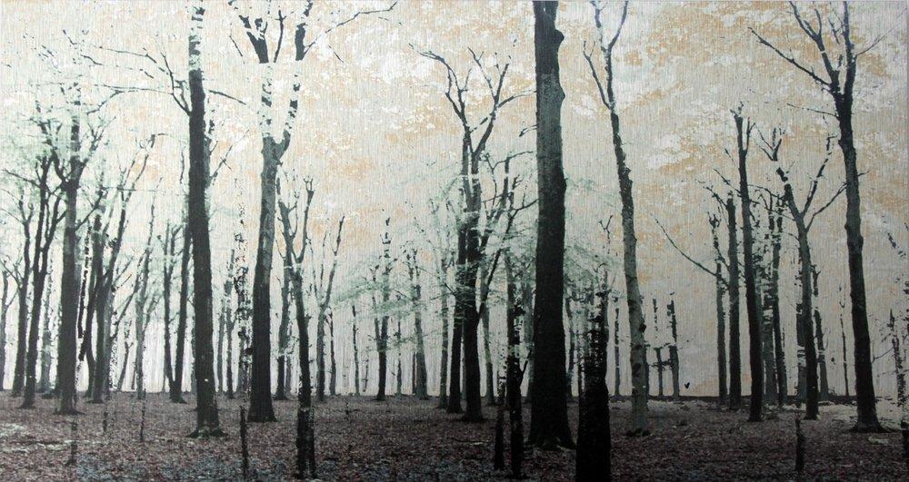 'Utrechtse Heuvelrug' (1/10) Flatbed Print on Brushed Aluminium 22cm x 40cm 2015 £495
