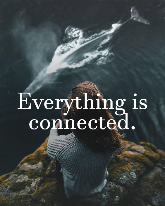 Everything is Connected.jpg