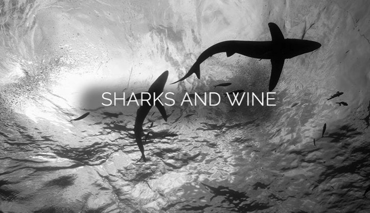 Maybe sounds like an odd combination?     But a member of ours wanted to have an unforgettable time in South Africa. We organised his whole trip, including visiting a vineyard to learn how their wine is made and leaving with some personalised bottles.     On the final day of their holiday, feeling brave, they asked us to find somewhere they could dive with sharks. Unfortunately, all local companies were fully booked, but we managed to charter a boat along with some experienced shark divers and they spent a whole morning having a truly once in a lifetime experience.