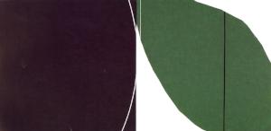"Untitled: 07-25,  2007, Acrylic on Canvas, 24"" x 47.5"" (60.5 x 121 cm)"