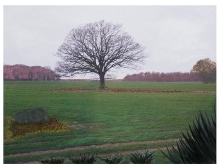 "English Countryside 12:00 Noon   Oil on digital print, 32"" x 43"", 2009"