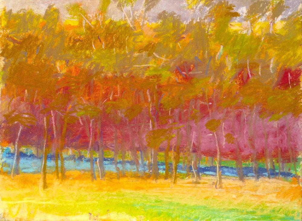 """Wolf Kahn  MIdsummer,  1993, Pastel, 9"""" x 12"""""""