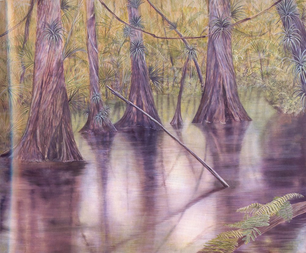 Smooth Cyprus Swamp   Oil on canvas, 58'' x 67'', 2003